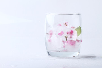pink flowers ice cube in glass