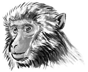 猿のリアルな斜め顔