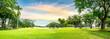 Leinwanddruck Bild - Tree in golf course