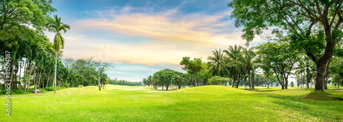 Tree in golf course - 81304187