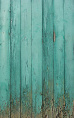 grungy aged wooden door in blue detail
