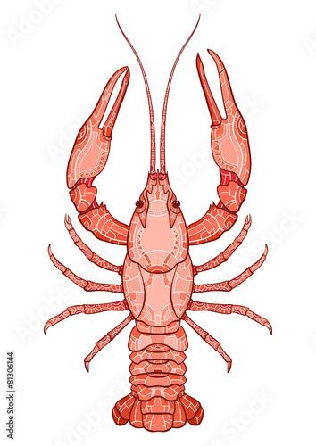 Decorative isolated crayfish - 81306144
