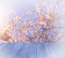 blue wood over blurred, blooming trees, for product display