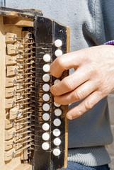 man playing concertina