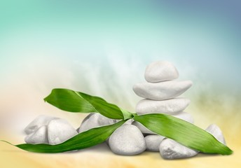 Zen. Zen  stones and bamboo on the white