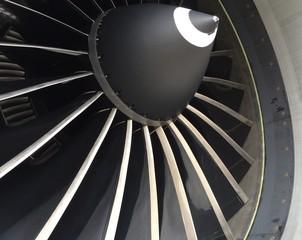 Aircraft Fan Blades