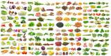 Fototapety set of vegetable on white background