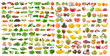 set of vegetable and fruit on white background - 81323948