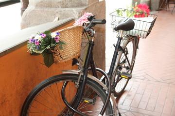 Flowered bike, Arcades, Bologna, Emilia Romagna, Italy