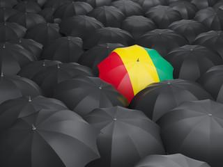 Umbrella with flag of guinea