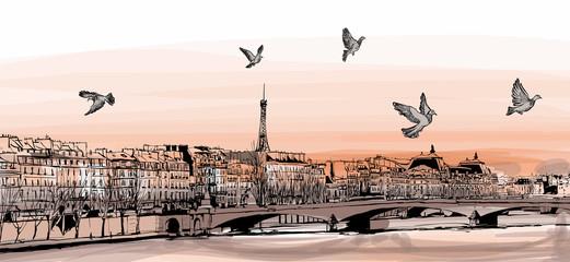 """View of Paris from """"Pont des arts"""""""