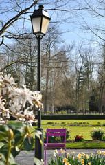 chaise au pied d'un lampadaire dans parc