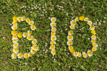 Wort BIO aus Blüten im Gras