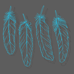 Hand drawn feathers set on dark background