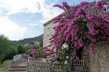 Stone residence , Croatia