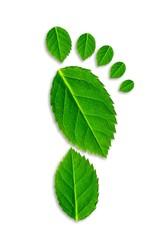 Fußabdruck mit grünen Blättern