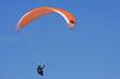 paraglider - 81347719