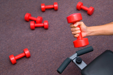 Trainer Hand with Dumbbell Exercise in Fitness