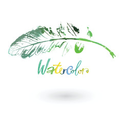 Watercolor natural leaf painted by hand