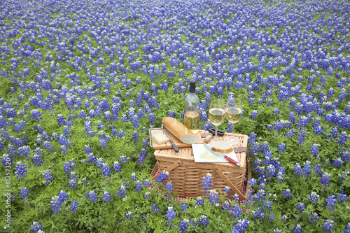 Fotobehang Picknick Picnic basket with wine, cheese and bread in a Texas Hill Countr