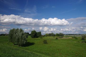 Dutch landscape