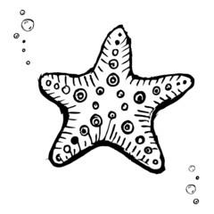 Starfish. Black and white version