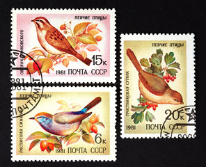 series of stamps printed in USSR, shows song birds, 1981