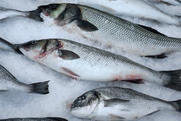 Fresh saltwater fish on crushed ice.