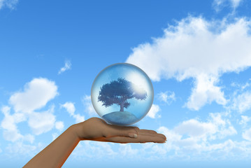 Female hand holding tree in globe