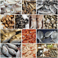 seafood display  collage, images from fish market in european co