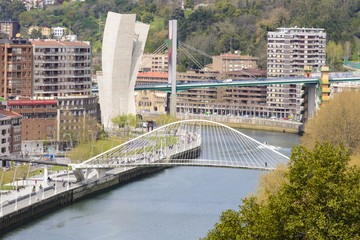 View of Bilbao city from Etxebarria park (Spain)