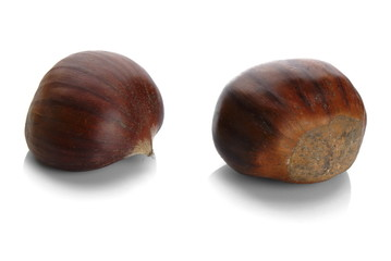 Studio shot of two chestnuts on white background