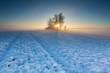 Beautiful winter field landscape.