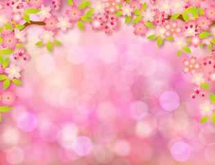 桜輝き50