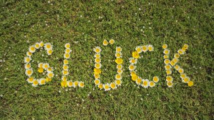 Wort GLÜCK aus Blüten in Blumenwiese