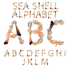 Alphabet made of different sea shells