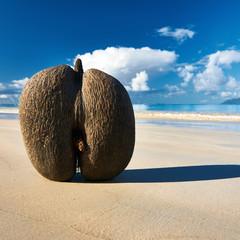 Sea's coconuts (coco de mer) on beach at Seychelles
