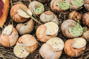 stuffed snails
