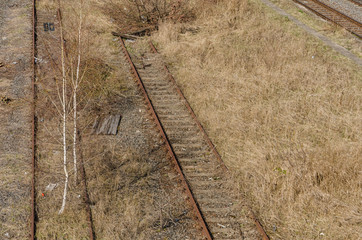 old abandoned railway tracks covered with vegetation