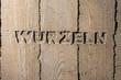 "Leinwanddruck Bild - Impulswort ""WURZELN"" am Brunnen im Klarahof Kollegium Stans"