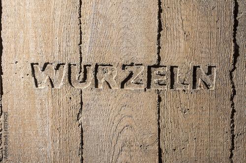 "Leinwanddruck Bild Impulswort ""WURZELN"" am Brunnen im Klarahof Kollegium Stans"