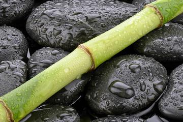 Mokry bambus na kamieniach bazaltowych