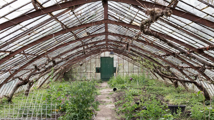 Old abandoned glasshouse