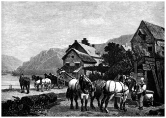 Horses - Country Scene - 19th century