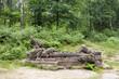 Leinwanddruck Bild - Fountain Of Jacob, Kuks, Czech republic