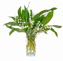 Convallaria majalis flowers bouquet in glass