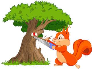 Funny squirrel saws tree branch