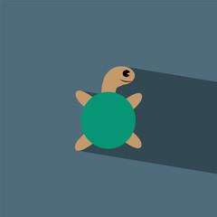 turtle flat icon  vector illustration eps10