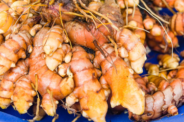 Tumeric root on display at the market