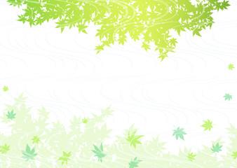 新緑 せせらぎ 青もみじ